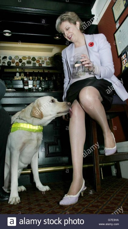 theresa-may-guide-dogs-G7E3HA.jpg