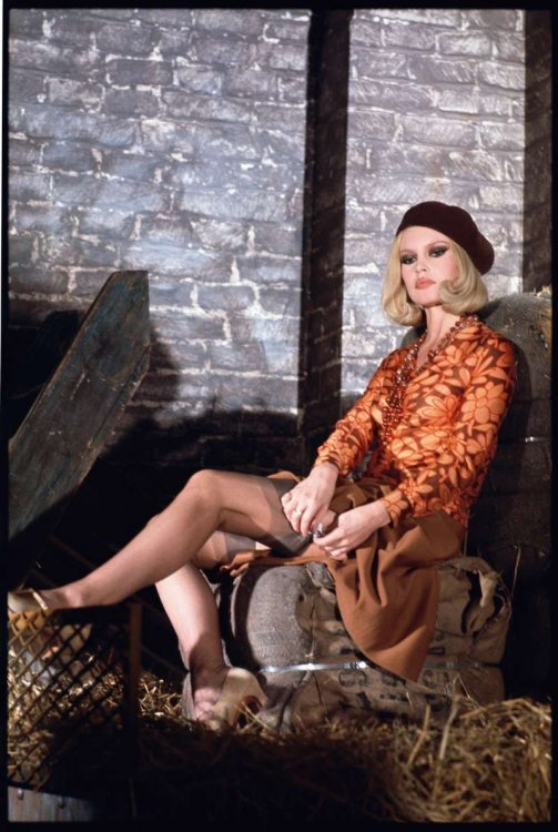 Bardot 1.jpg