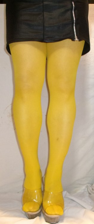 gipsy yellow 40 den tights.JPG